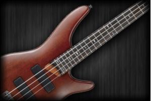 Basszusgitár fotó